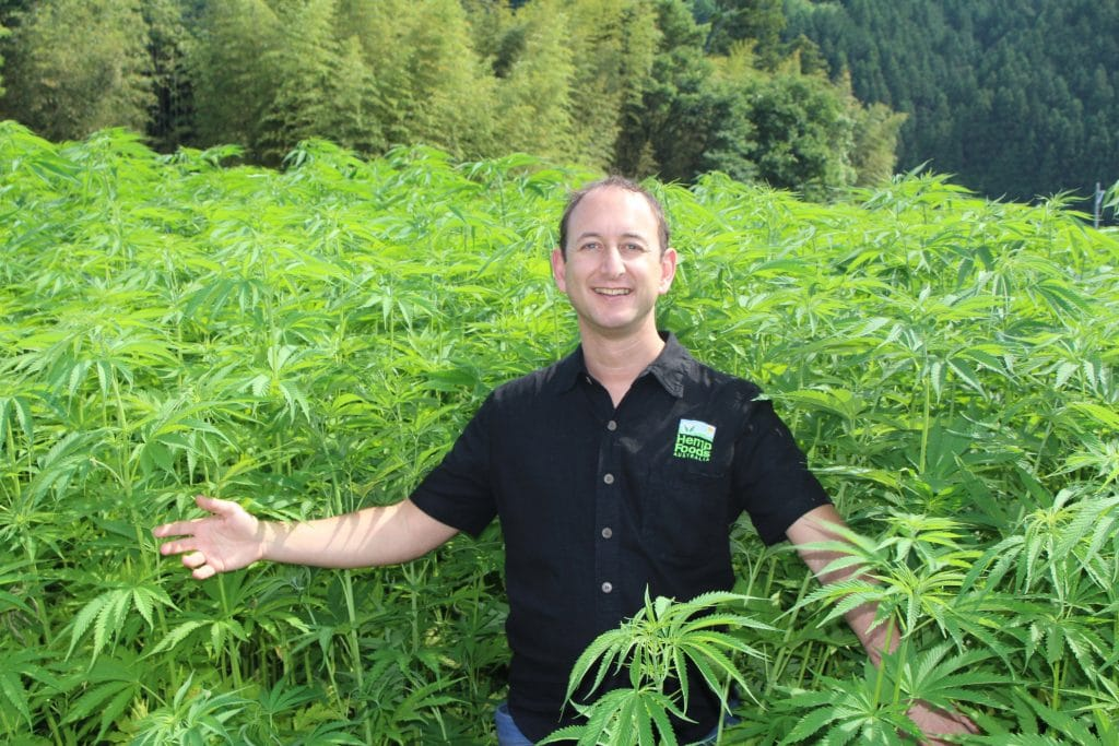 Hemp Foods Australia founder Paul Benhaim in a hemp crop