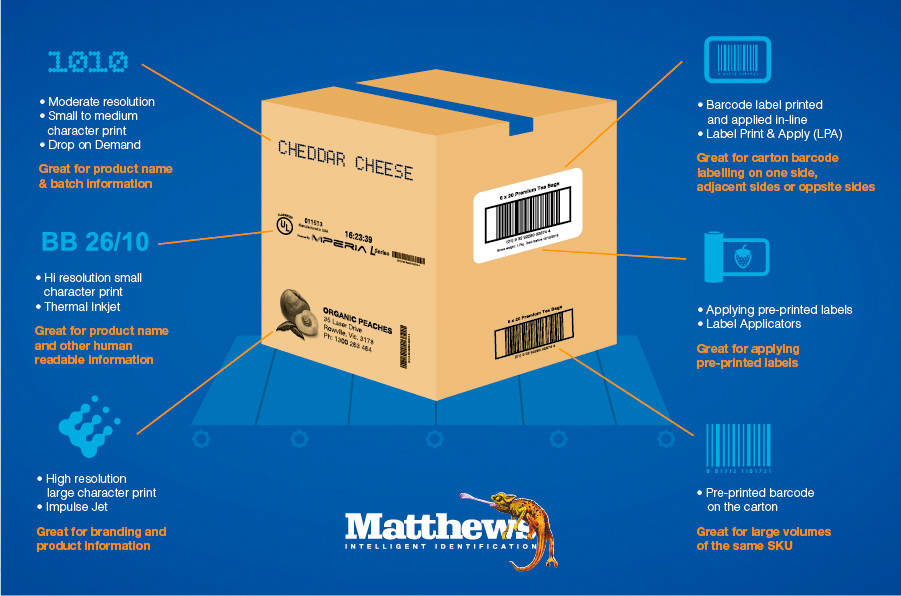 Your Quick Guide To Choosing The Right Carton Coding And Labelling